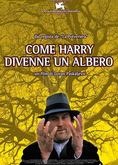 COME HARRY DIVENNE UN ALBERO (HOW HARRY BECAME A TREE)